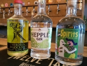 new-gins
